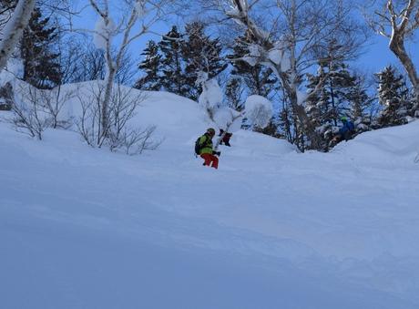 2016年1月23日札幌国際スキー場に近い白井岳支尾根の山を滑る_c0242406_1772532.jpg