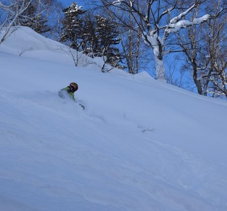 2016年1月23日札幌国際スキー場に近い白井岳支尾根の山を滑る_c0242406_178366.jpg