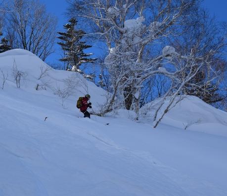 2016年1月23日札幌国際スキー場に近い白井岳支尾根の山を滑る_c0242406_1792144.jpg