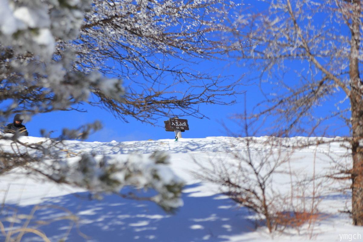 スノーシュー天国の入笠山へ(2)_f0157812_14264903.jpg