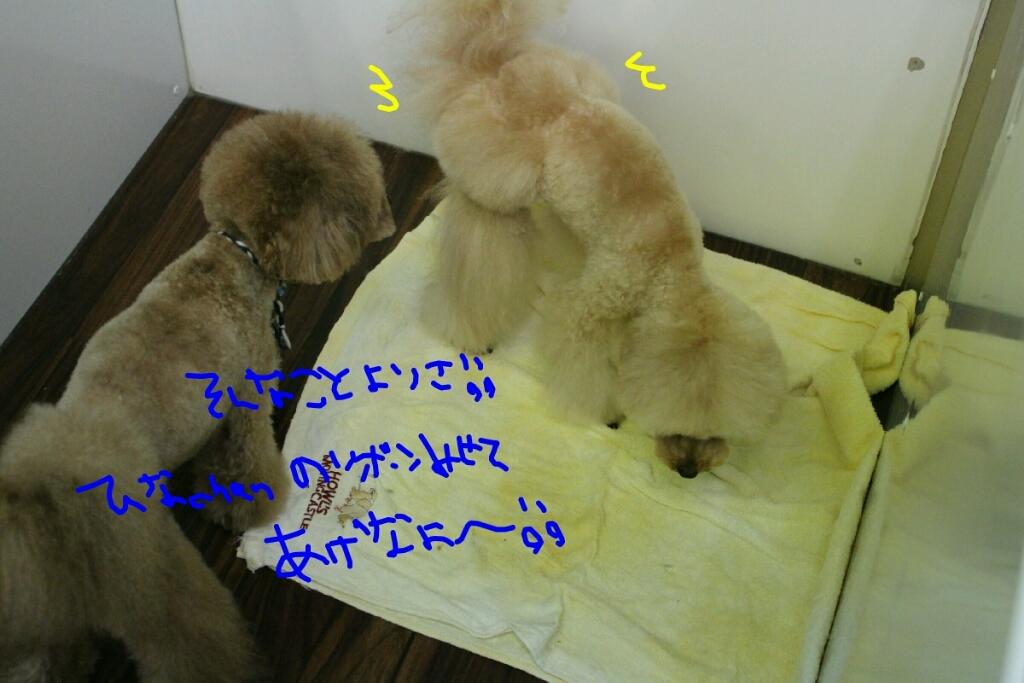ゲット_b0130018_20060099.jpg