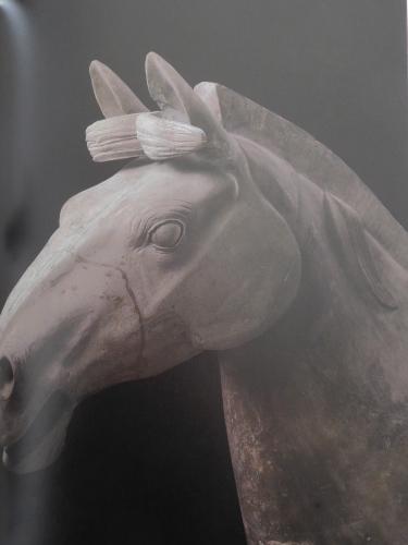 始皇帝と大兵馬俑 東京国立博物館_e0345320_00144885.jpg