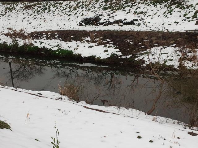 雪が溶けた_d0150722_19260745.jpg