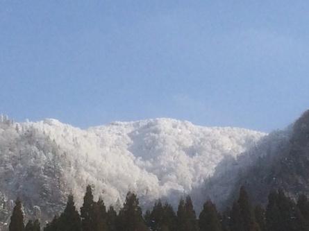 1月28日(木)雪質良好!_f0101226_10495998.jpg