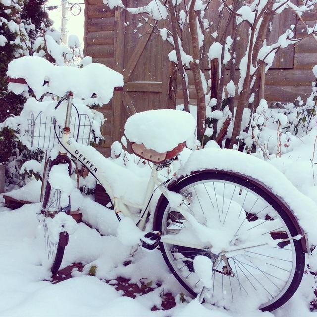 大雪。_b0125443_1259269.jpg