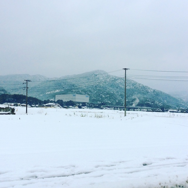 大雪。_b0125443_130032.jpg