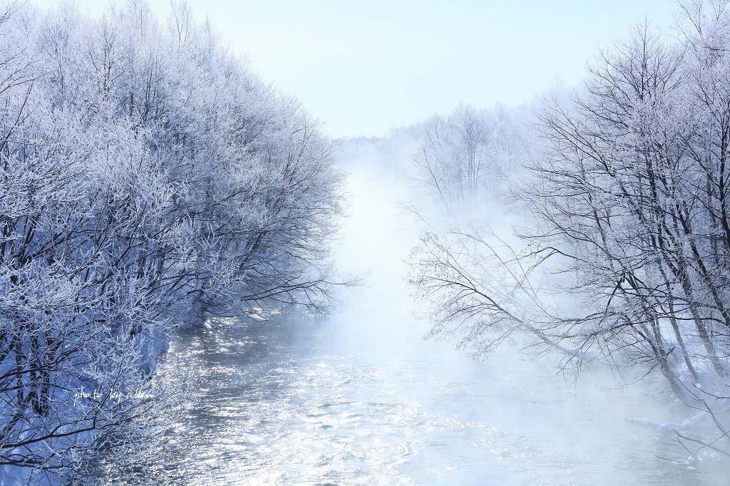 ケアラシの川より~_a0039860_1944862.jpg