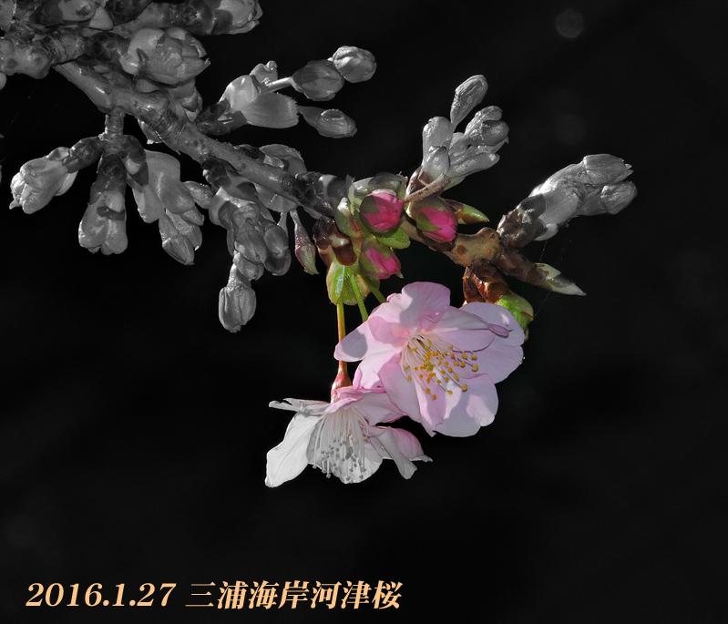 d0251161_09422345.jpg