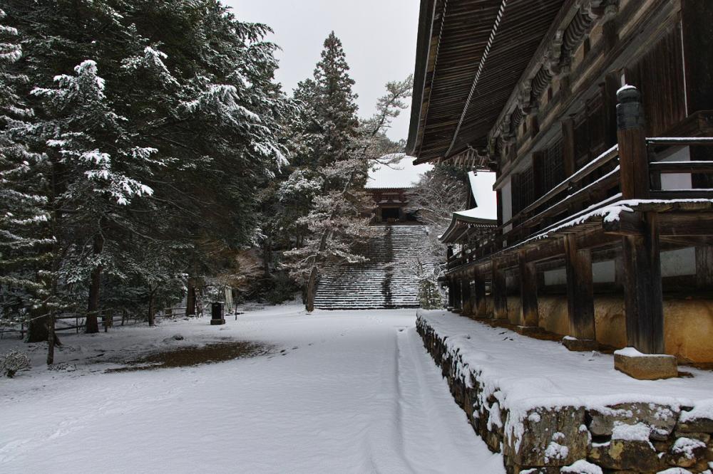 神護寺 雪景色 2016                                 _f0021869_2014362.jpg