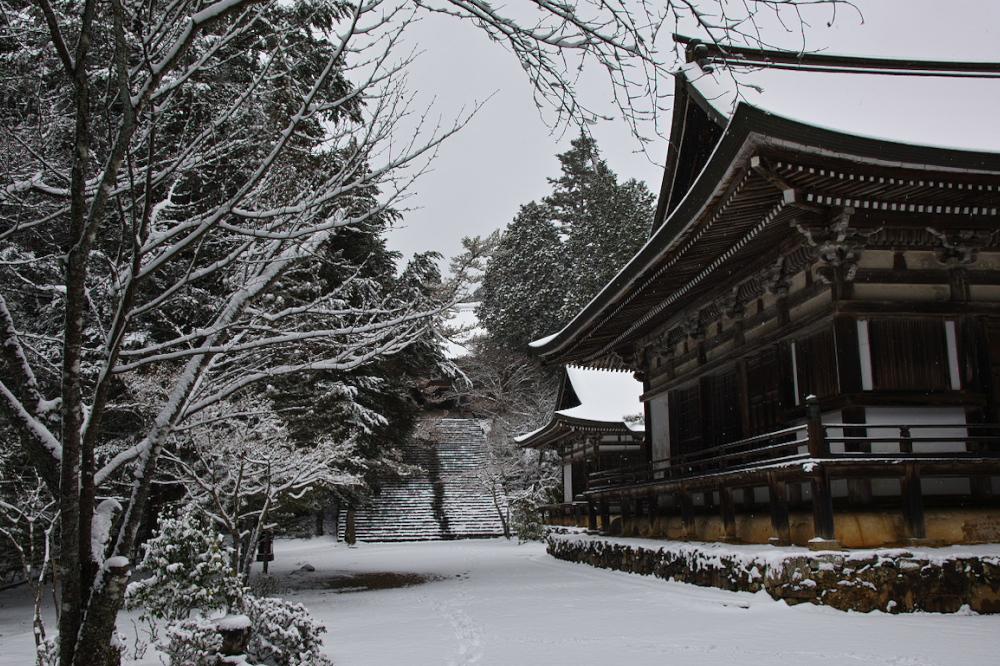 神護寺 雪景色 2016                                 _f0021869_20191147.jpg