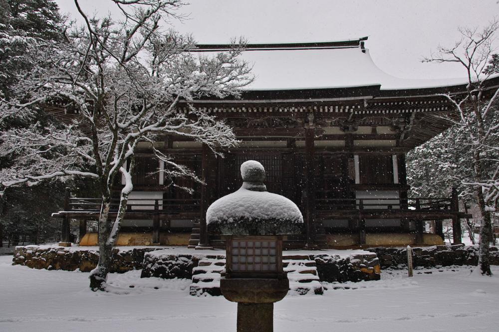 神護寺 雪景色 2016                                 _f0021869_20194016.jpg