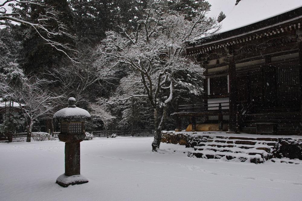 神護寺 雪景色 2016                                 _f0021869_20195650.jpg