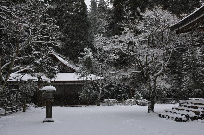 神護寺 雪景色 2016                                 _f0021869_20202161.jpg