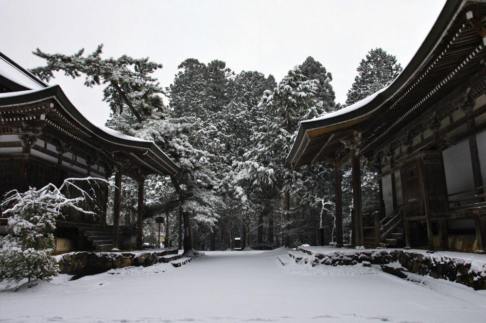 神護寺 雪景色 2016                                 _f0021869_20213167.jpg