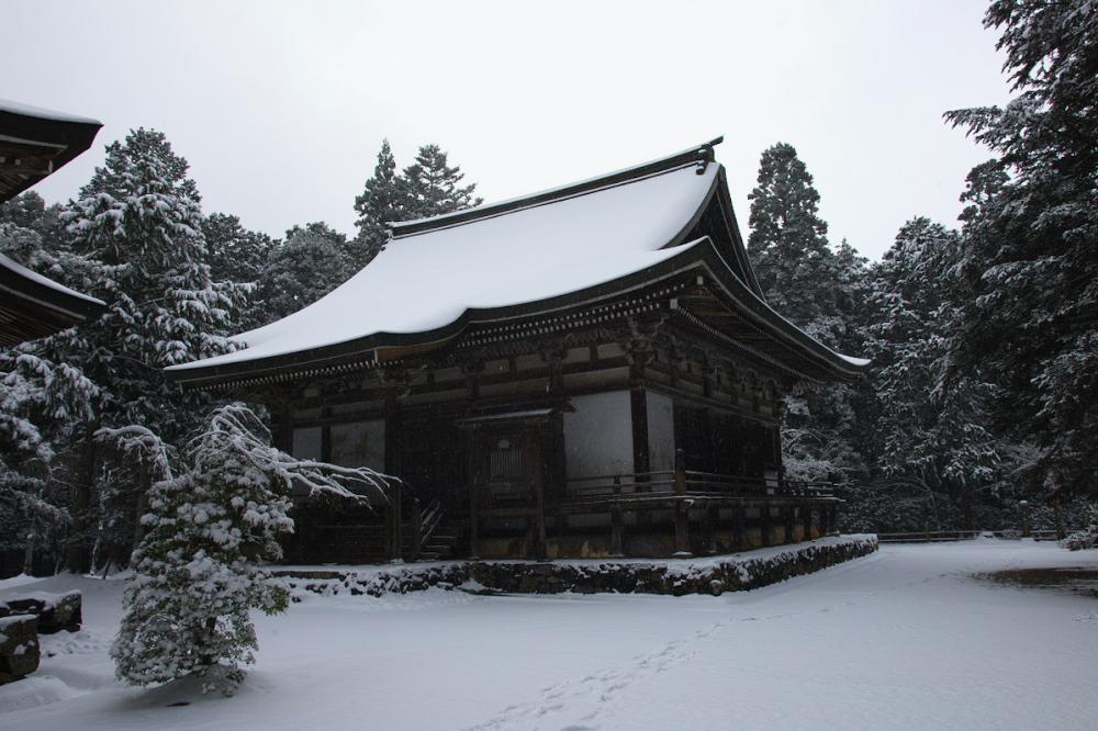 神護寺 雪景色 2016                                 _f0021869_20221988.jpg