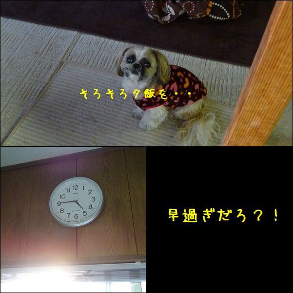 e0234881_011162.jpg