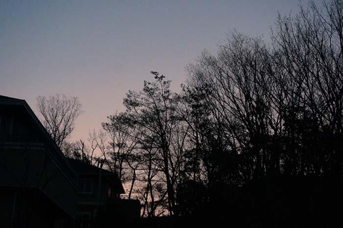 朝の散歩で、、_e0016894_8484994.jpg