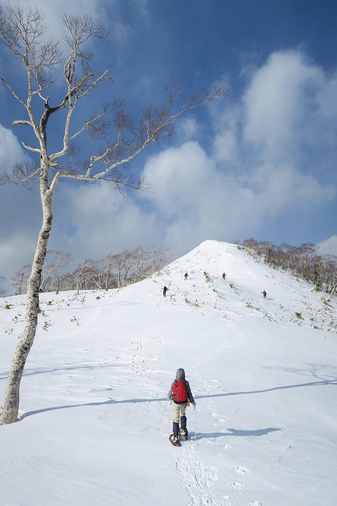 紋別岳から748mピーク、1月27日_f0138096_1233730.jpg