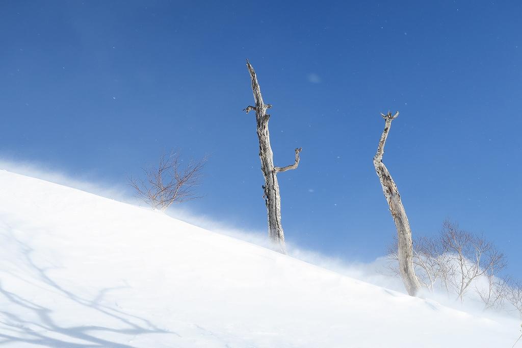 紋別岳から748mピーク、1月27日_f0138096_1244028.jpg