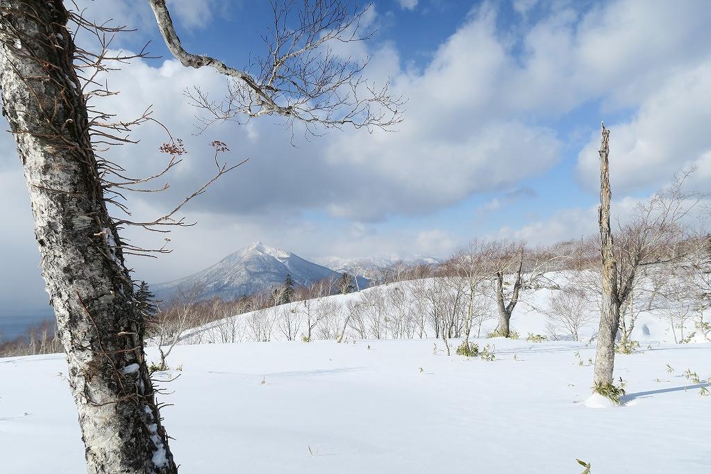 紋別岳から748mピーク、1月27日_f0138096_12501.jpg