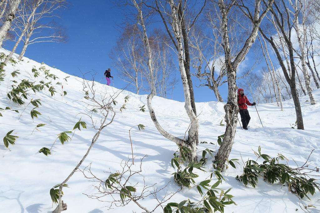 紋別岳から748mピーク、1月27日_f0138096_1251038.jpg