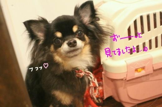 100円shop♪_b0130018_19000144.jpg
