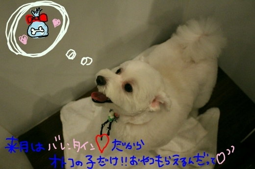 100円shop♪_b0130018_19084870.jpg
