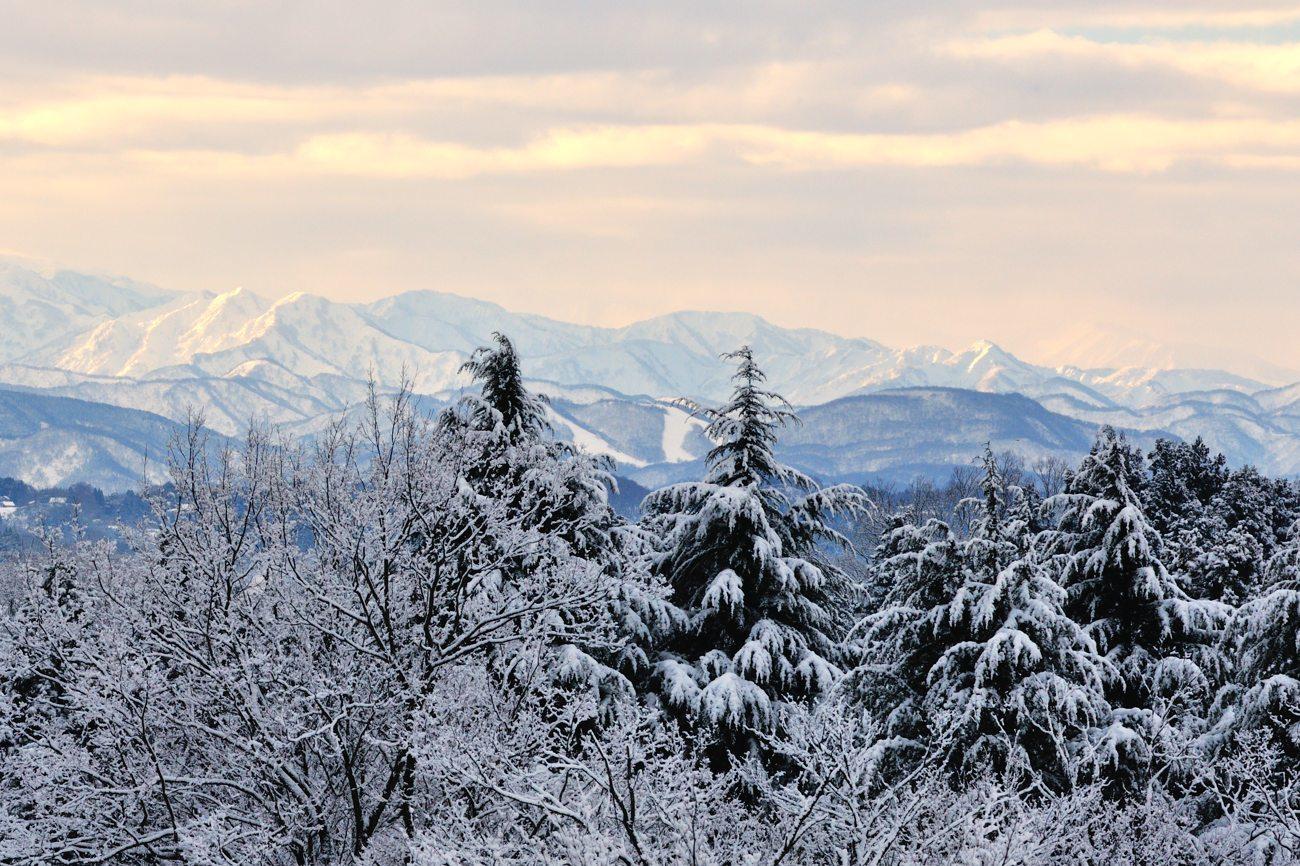 久々の雪景色_c0220824_19263617.jpg