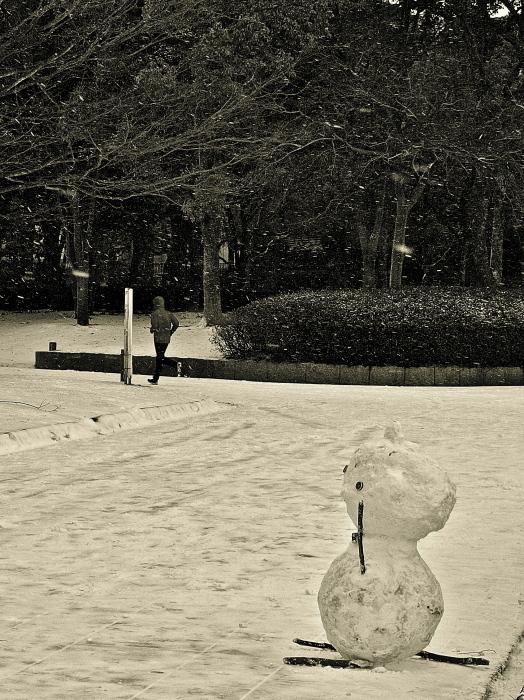 Snapshot of the snow day_f0315034_12195359.jpg