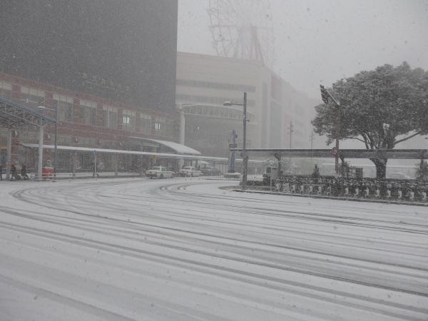 鹿児島駅前は雪国?_f0337554_17205847.jpg