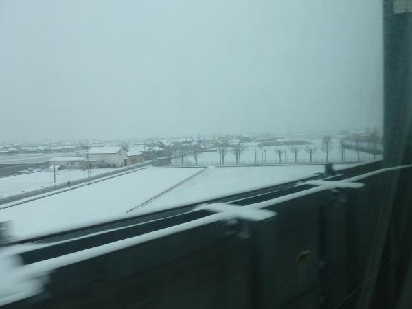 鹿児島駅前は雪国?_f0337554_17252843.jpg