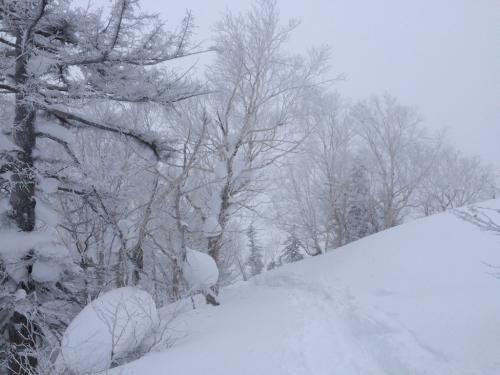 北海道2日目⭐️札幌国際スキー場_c0151965_11312170.jpg