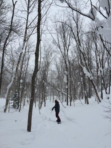 北海道2日目⭐️札幌国際スキー場_c0151965_11312242.jpg