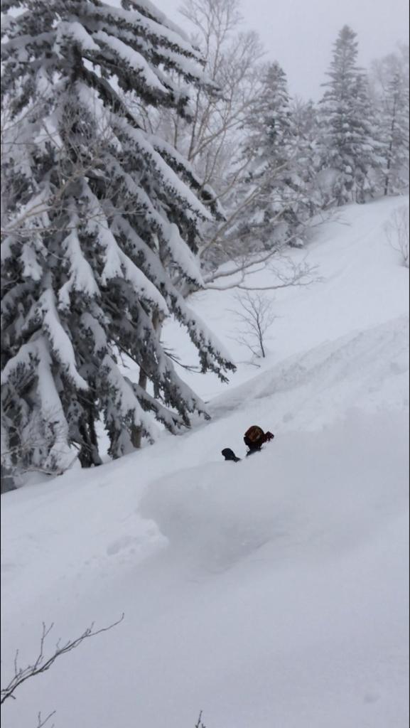北海道2日目⭐️札幌国際スキー場_c0151965_11312254.jpg
