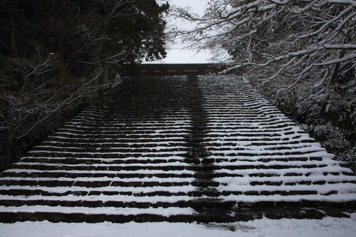 神護寺 雪景色 2016                                 _f0021869_2250116.jpg
