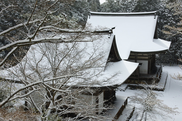 神護寺 雪景色 2016                                 _f0021869_22551062.jpg