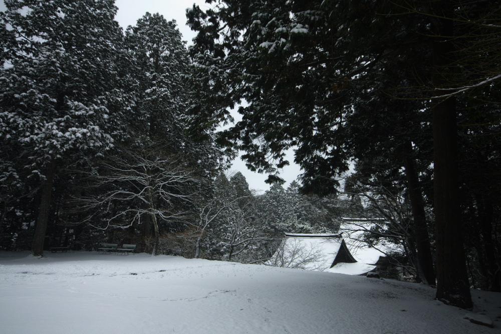 神護寺 雪景色 2016                                 _f0021869_2345462.jpg