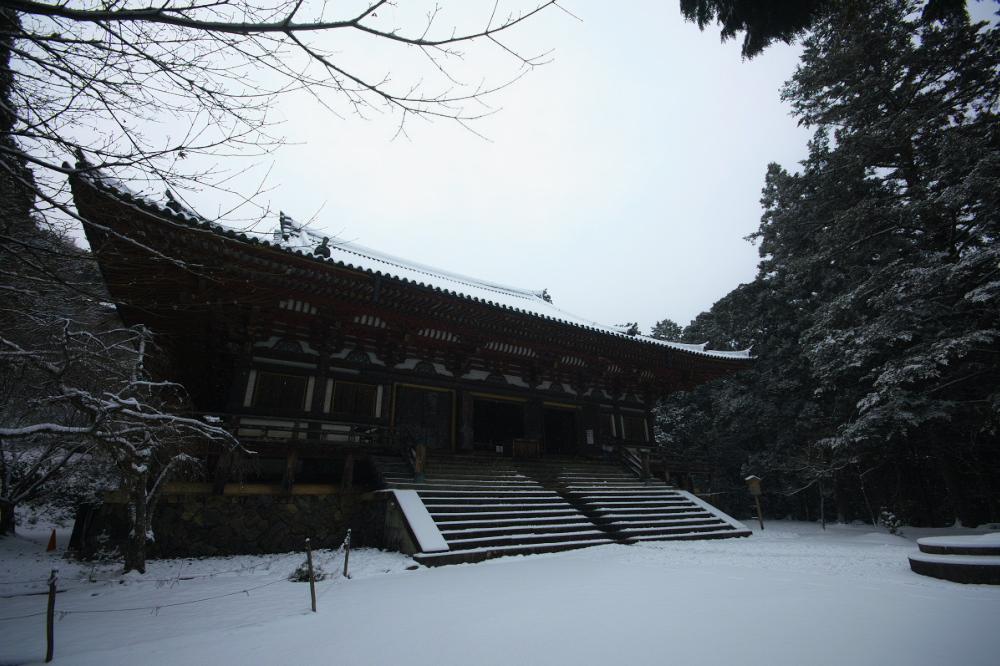神護寺 雪景色 2016                                 _f0021869_2352338.jpg