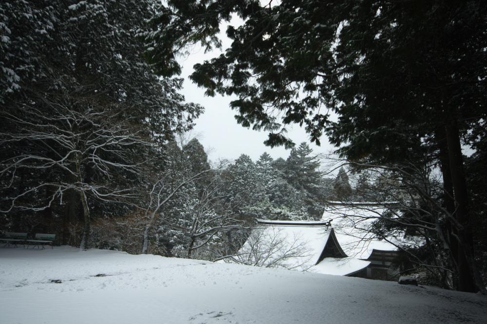 神護寺 雪景色 2016                                 _f0021869_2353934.jpg