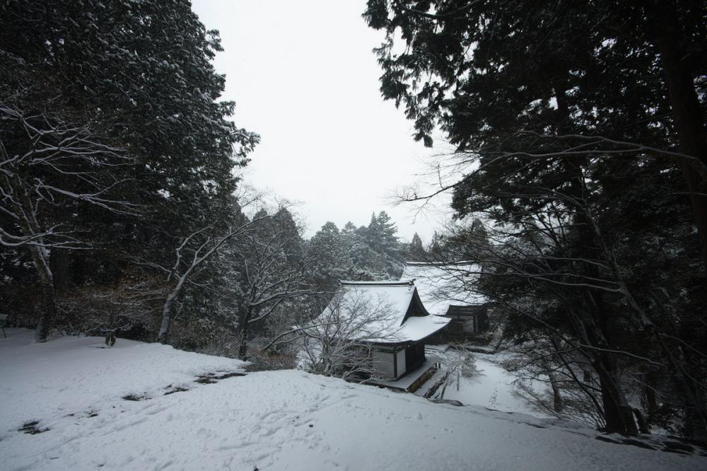神護寺 雪景色 2016                                 _f0021869_2355628.jpg