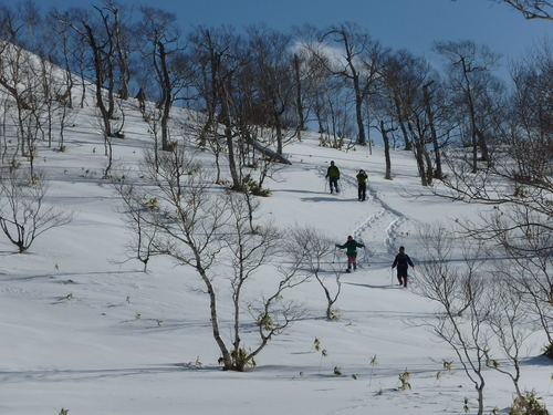 紋別岳から748mピーク、1月27日-同行者からの写真-_f0138096_1052430.jpg