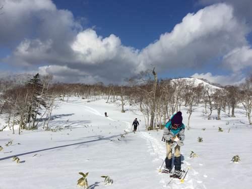 紋別岳から748mピーク、1月27日-同行者からの写真-_f0138096_1072245.jpg