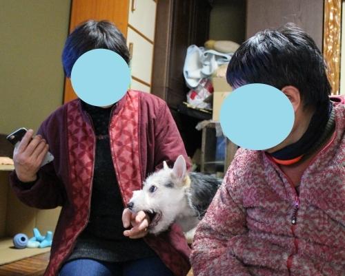 立春☆ゴボちゃん幸せ報告_b0207320_21003982.jpg