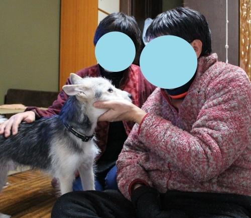 立春☆ゴボちゃん幸せ報告_b0207320_21005188.jpg