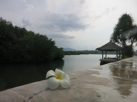 バリ島ツアー報告3日目_c0070933_23451994.jpg