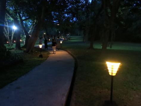 バリ島ツアー報告3日目_c0070933_23502397.jpg