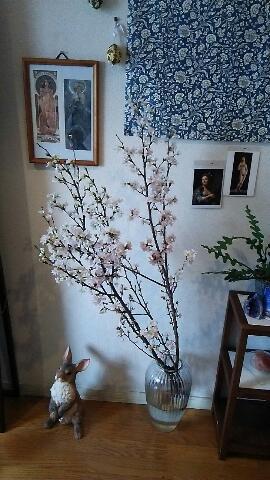 サロンに『桜』を飾りました_f0008555_2092762.jpg