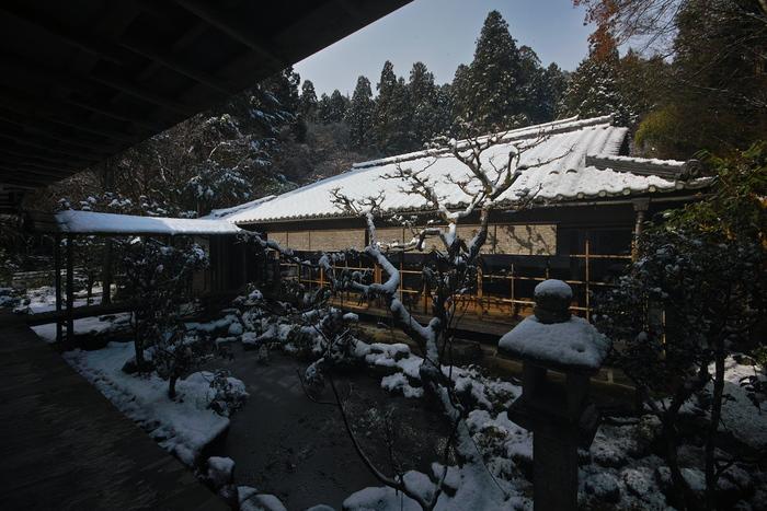 高山寺 雪景色 2016                                 _f0021869_23305993.jpg