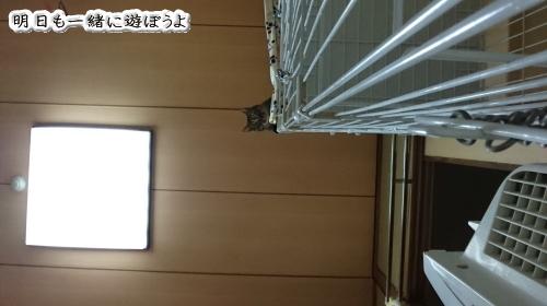 b0239781_20004646.jpg