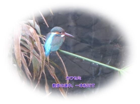 d0018704_22153048.jpg